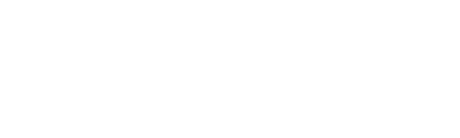 The Security Times